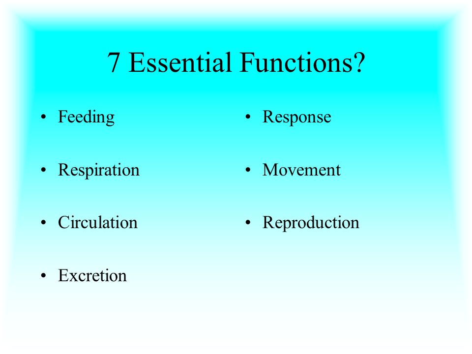 7 Essential Functions Feeding Respiration Circulation Excretion