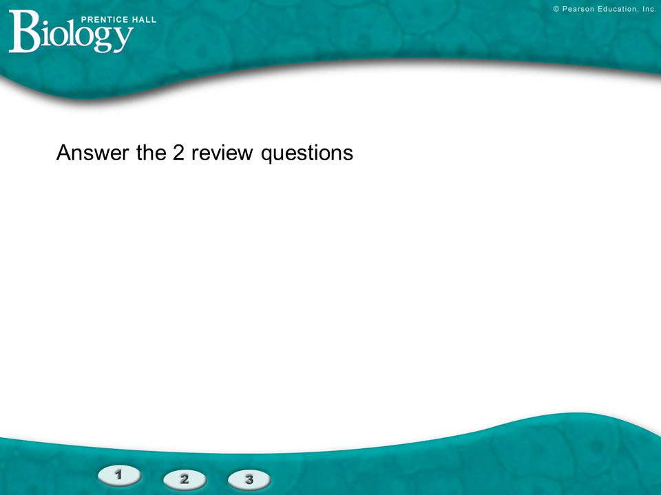 Answer the 2 review questions