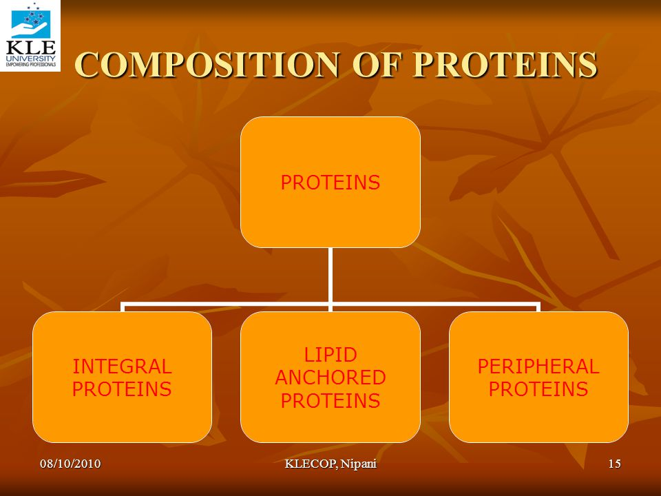 COMPOSITION OF PROTEINS