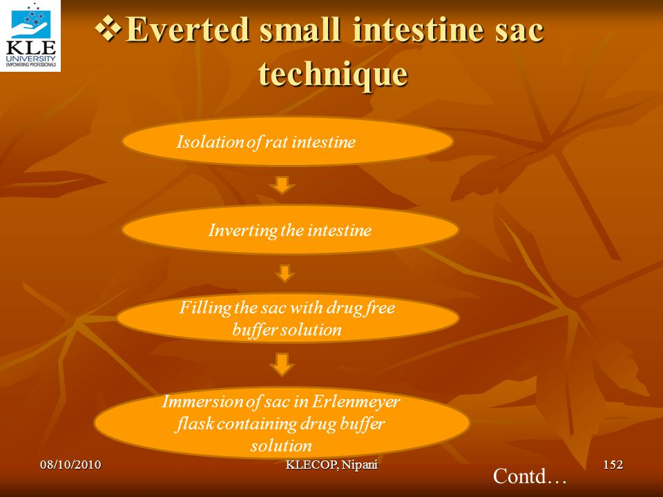 Everted small intestine sac technique