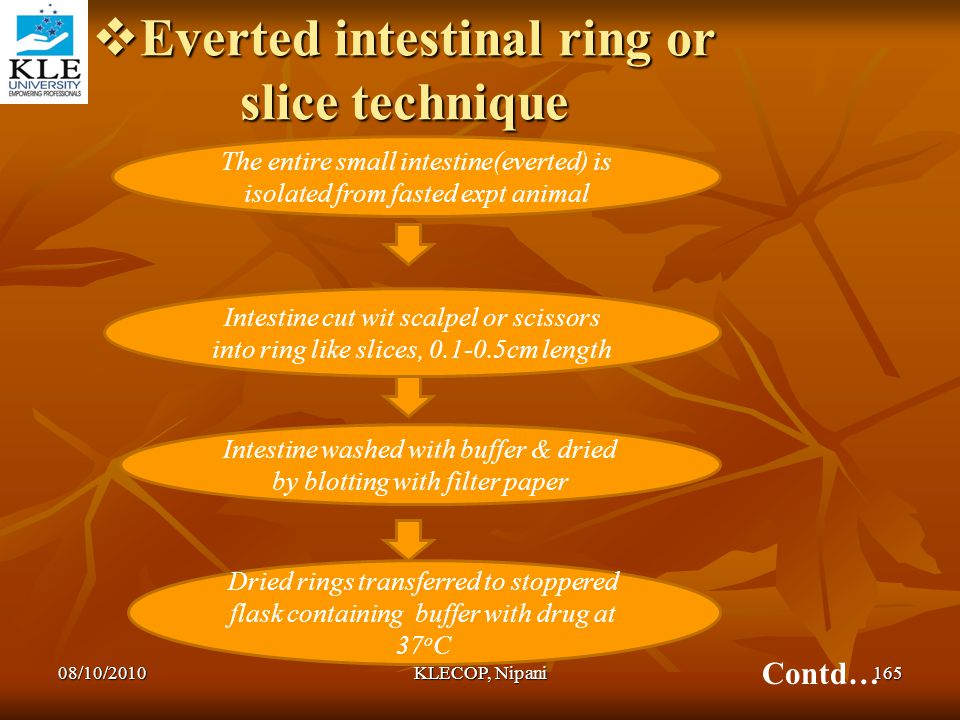 Everted intestinal ring or slice technique