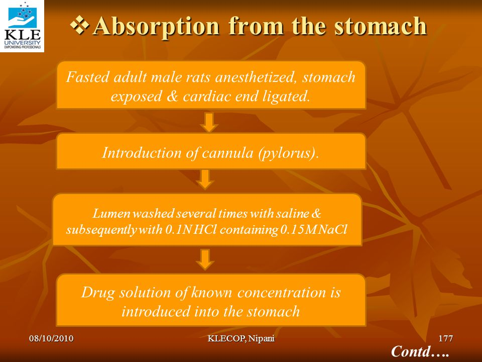 Absorption from the stomach