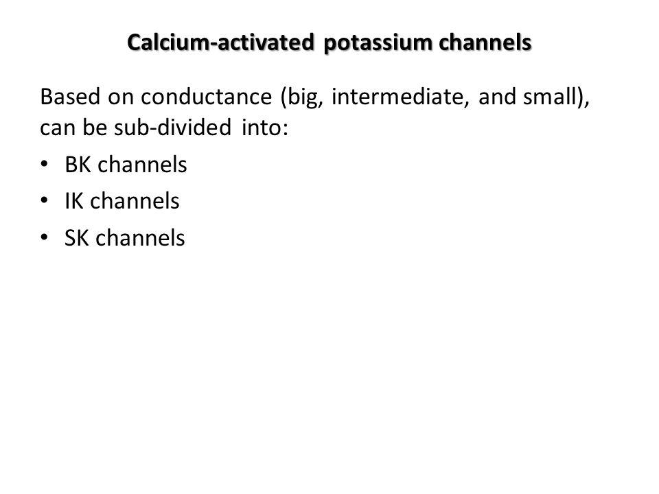 Calcium-activated potassium channels