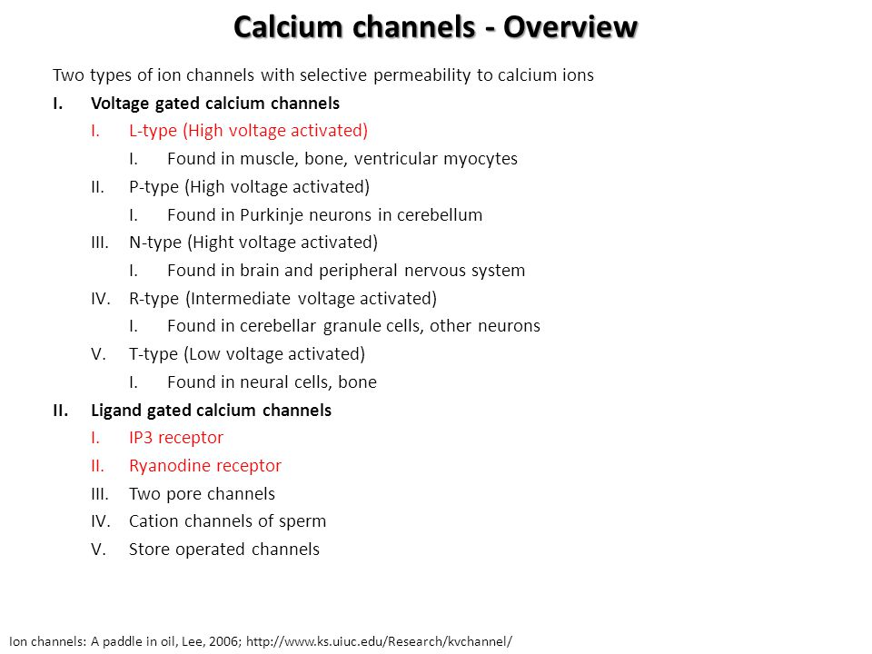 Calcium channels - Overview
