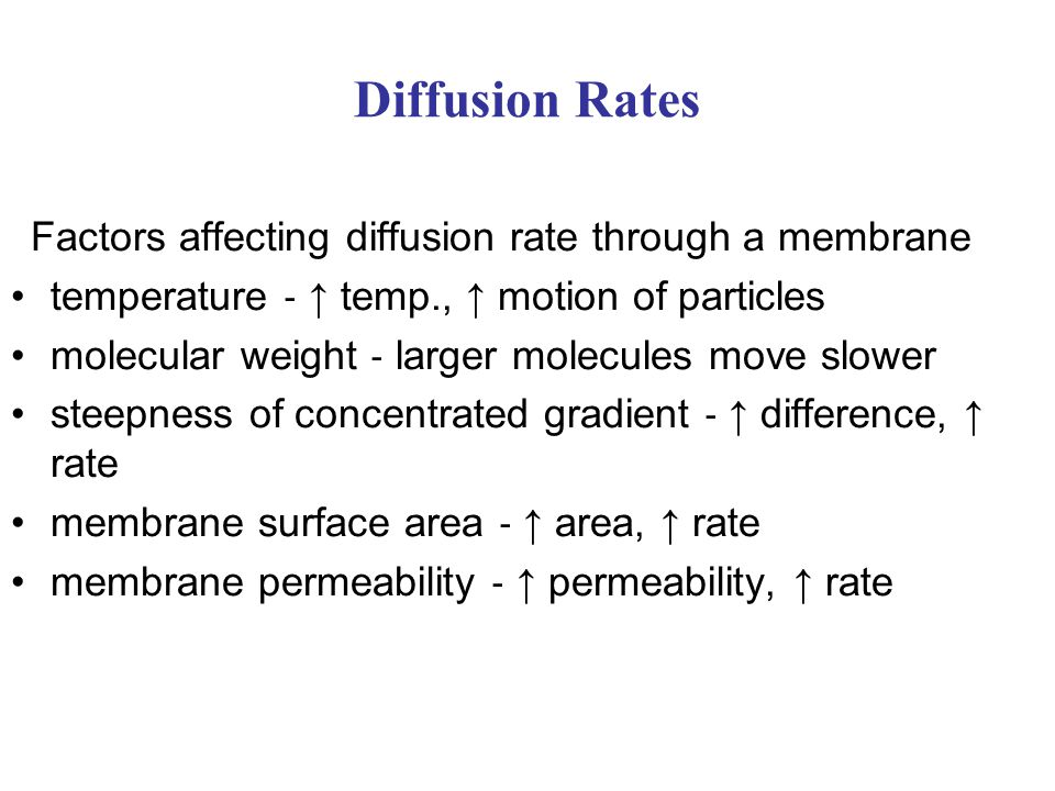 Factors affecting diffusion rate through a membrane