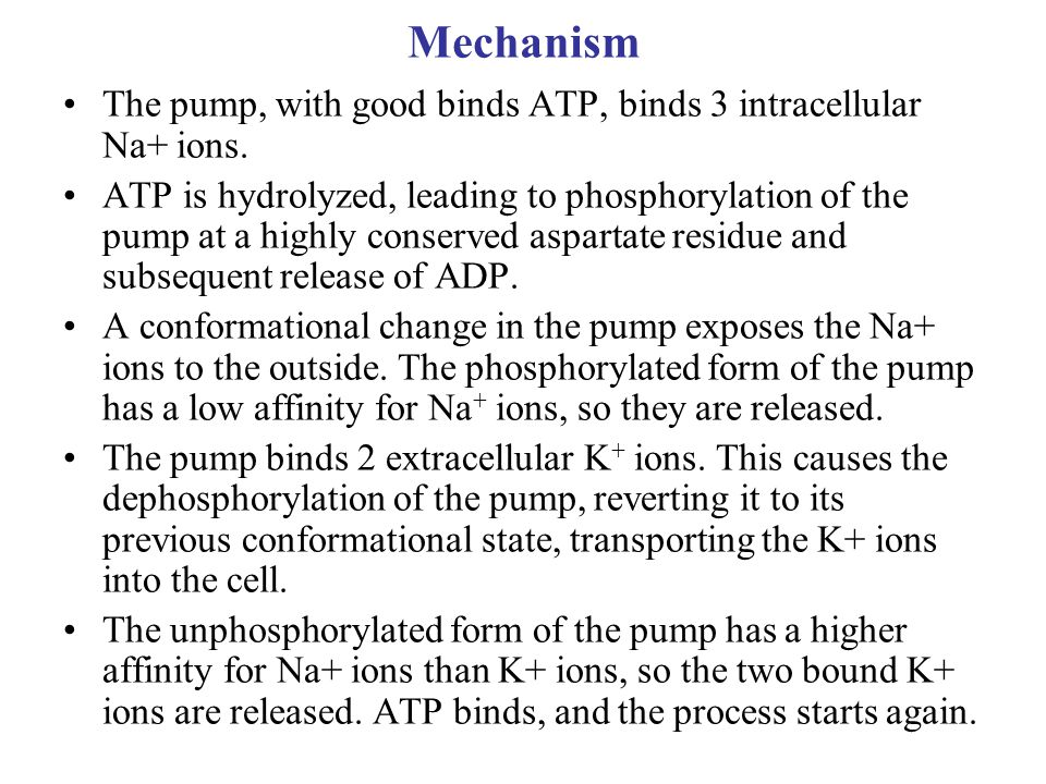 Mechanism The pump, with good binds ATP, binds 3 intracellular Na+ ions.