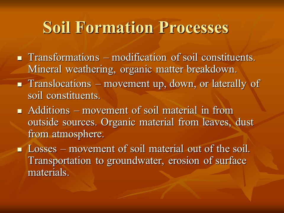 Soil Formation Processes