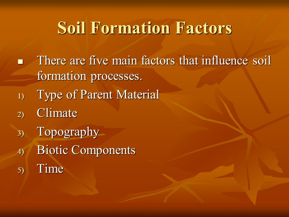 Soil Formation Factors