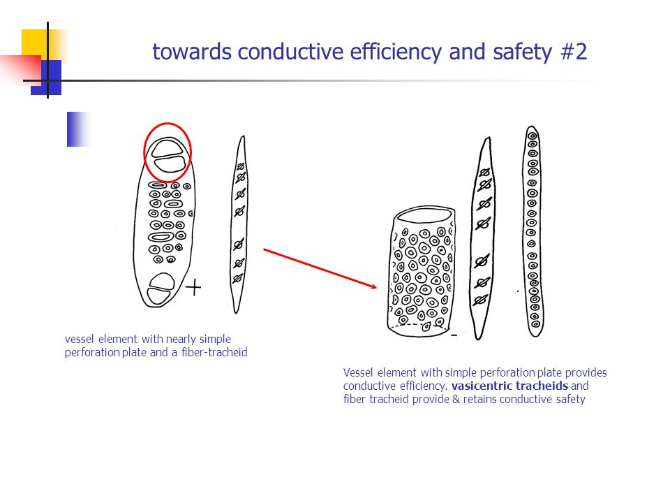 towards conductive efficiency and safety #2