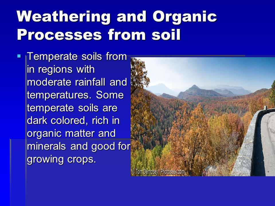 Weathering and Organic Processes from soil