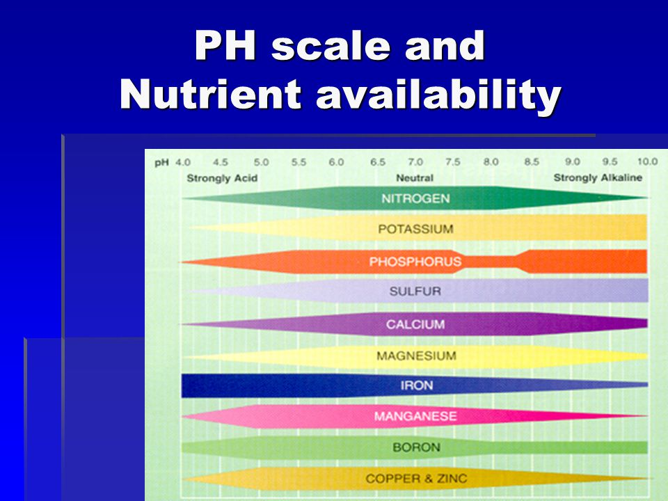 PH scale and Nutrient availability