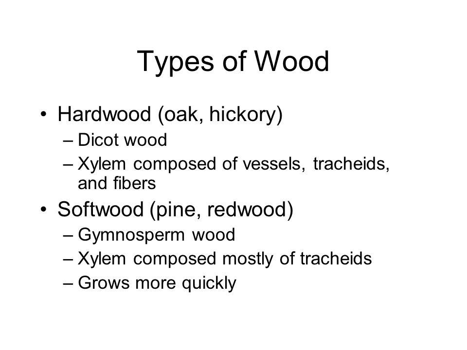 Types of Wood Hardwood (oak, hickory) Softwood (pine, redwood)