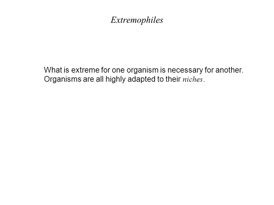 Extremophiles What is extreme for one organism is necessary for another.