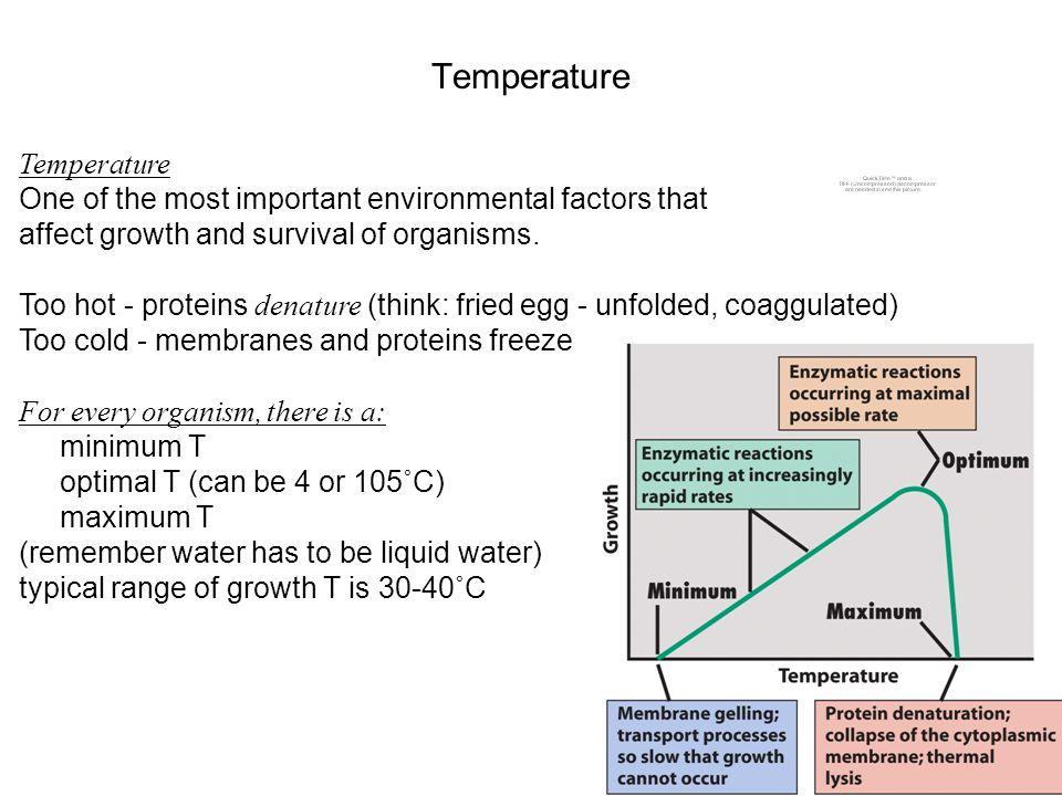 Temperature Temperature
