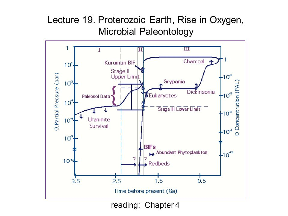 Lecture 19. Proterozoic Earth, Rise in Oxygen, Microbial Paleontology