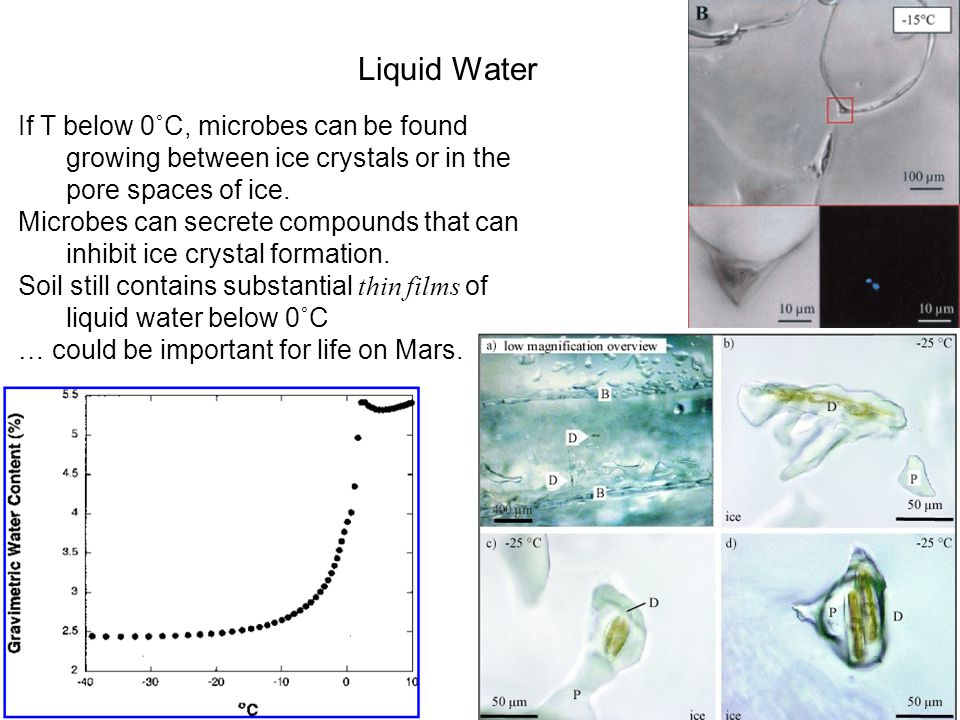 Liquid Water If T below 0˚C, microbes can be found