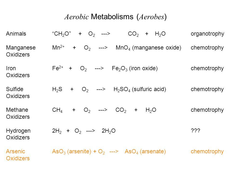 Aerobic Metabolisms (Aerobes)