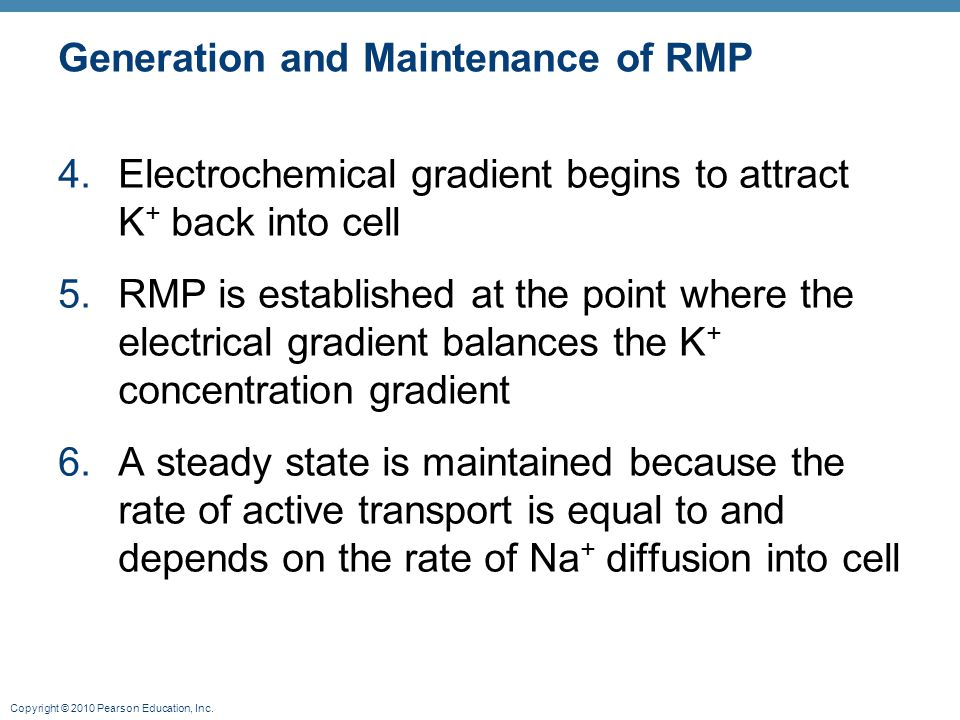 Generation and Maintenance of RMP
