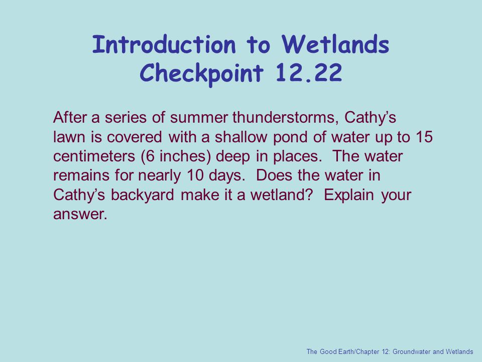 Introduction to Wetlands Checkpoint 12.22