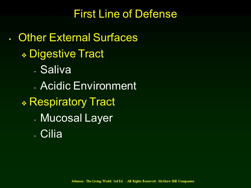 Other External Surfaces Digestive Tract Saliva Acidic Environment