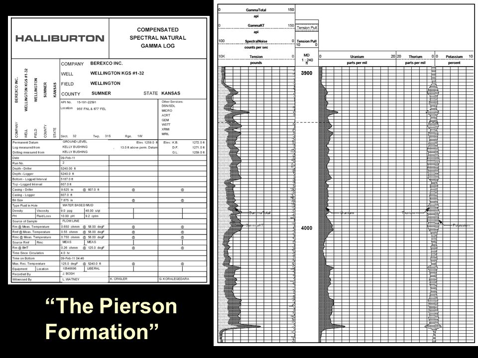 The Pierson Formation