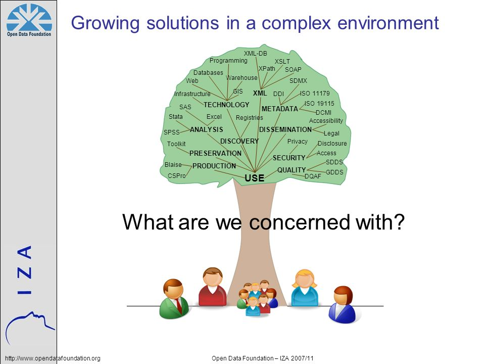 Growing solutions in a complex environment
