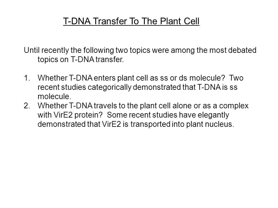 T-DNA Transfer To The Plant Cell