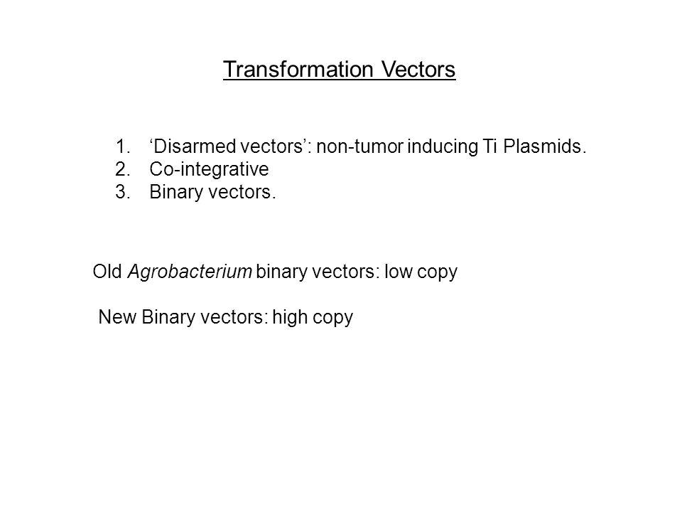 Transformation Vectors