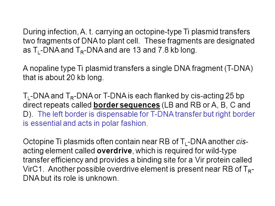 During infection, A. t. carrying an octopine-type Ti plasmid transfers two fragments of DNA to plant cell. These fragments are designated as TL-DNA and TR-DNA and are 13 and 7.8 kb long.
