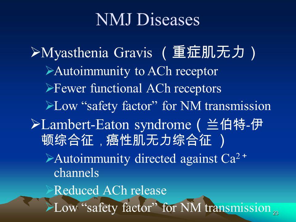 NMJ Diseases Myasthenia Gravis (重症肌无力)