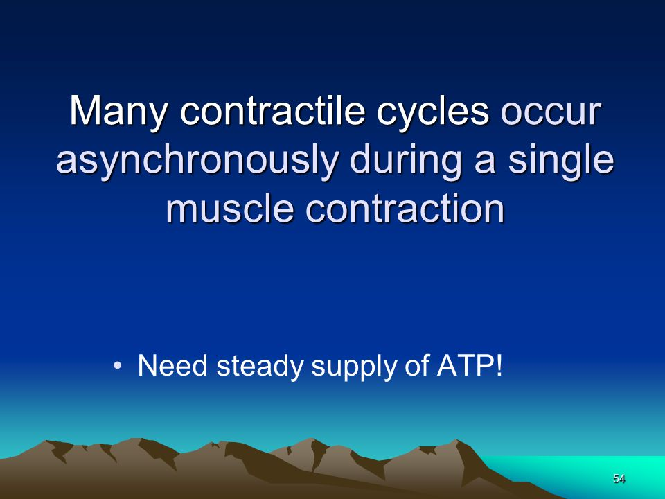 Need steady supply of ATP!