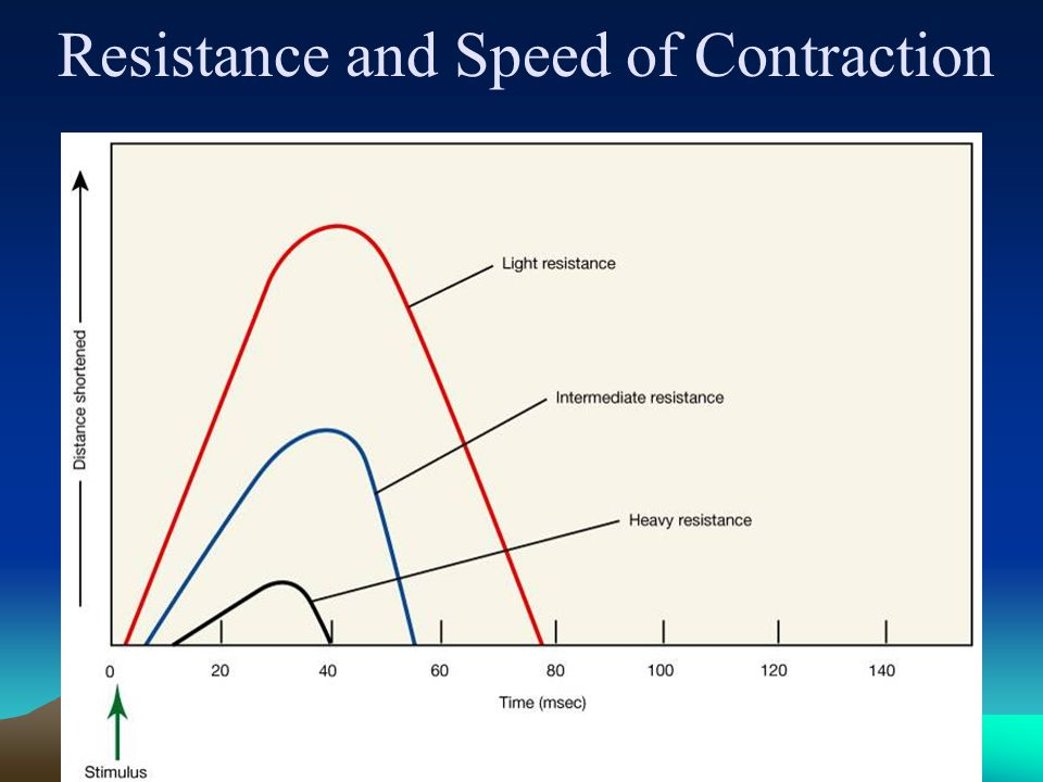 Resistance and Speed of Contraction