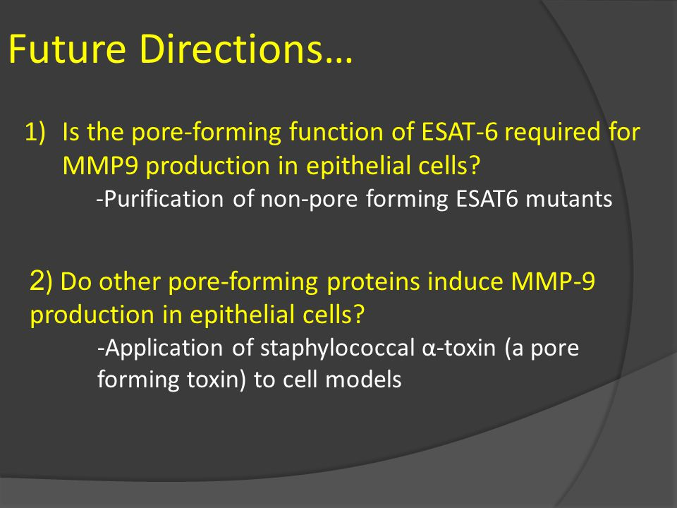 Future Directions… Is the pore-forming function of ESAT-6 required for MMP9 production in epithelial cells