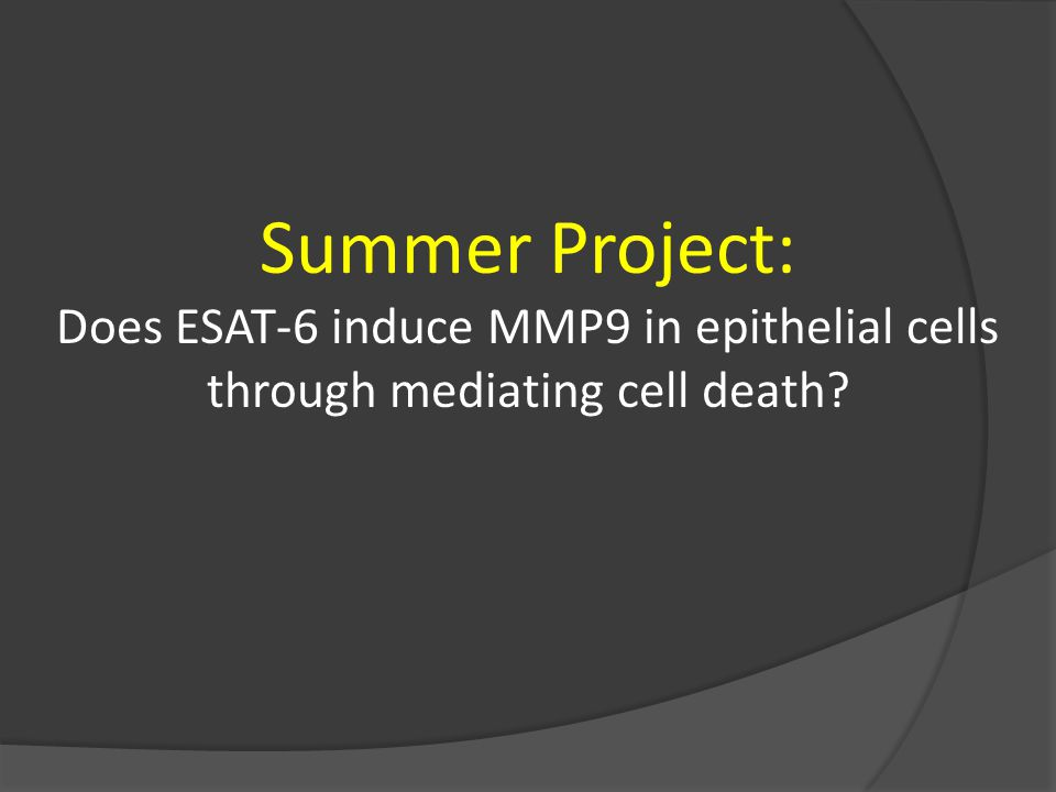 Summer Project: Does ESAT-6 induce MMP9 in epithelial cells through mediating cell death