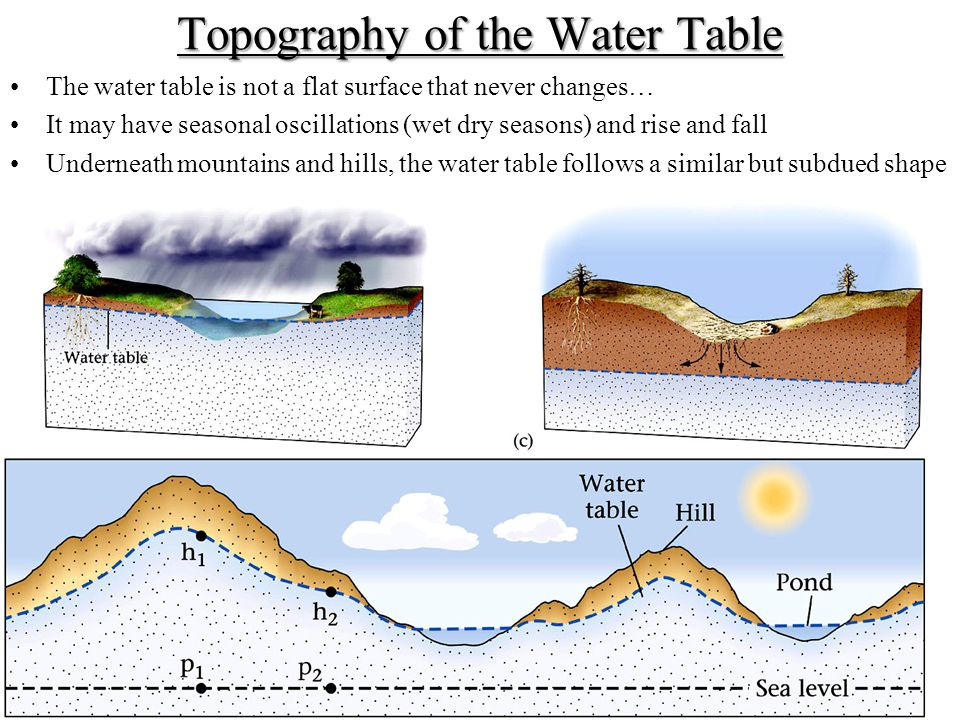 Topography of the Water Table