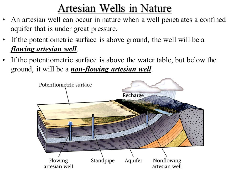 Artesian Wells in Nature