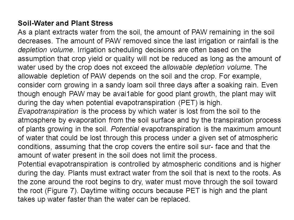 Soil-Water and Plant Stress