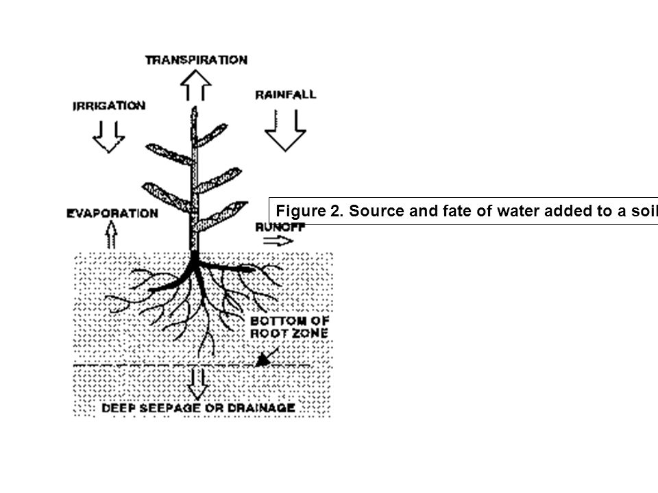 Figure 2. Source and fate of water added to a soil system