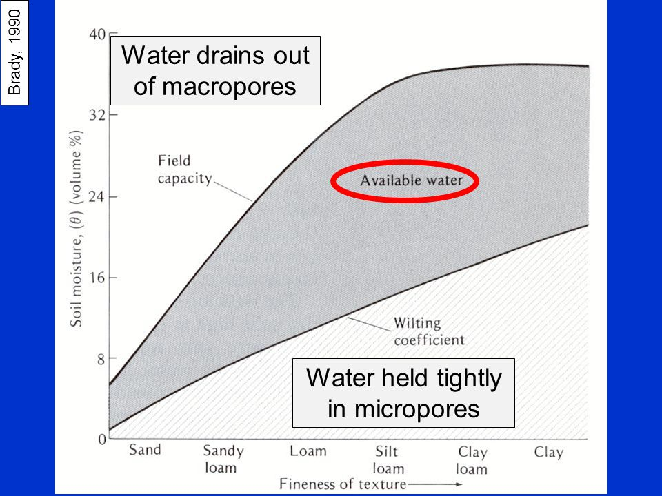 Water drains out of macropores