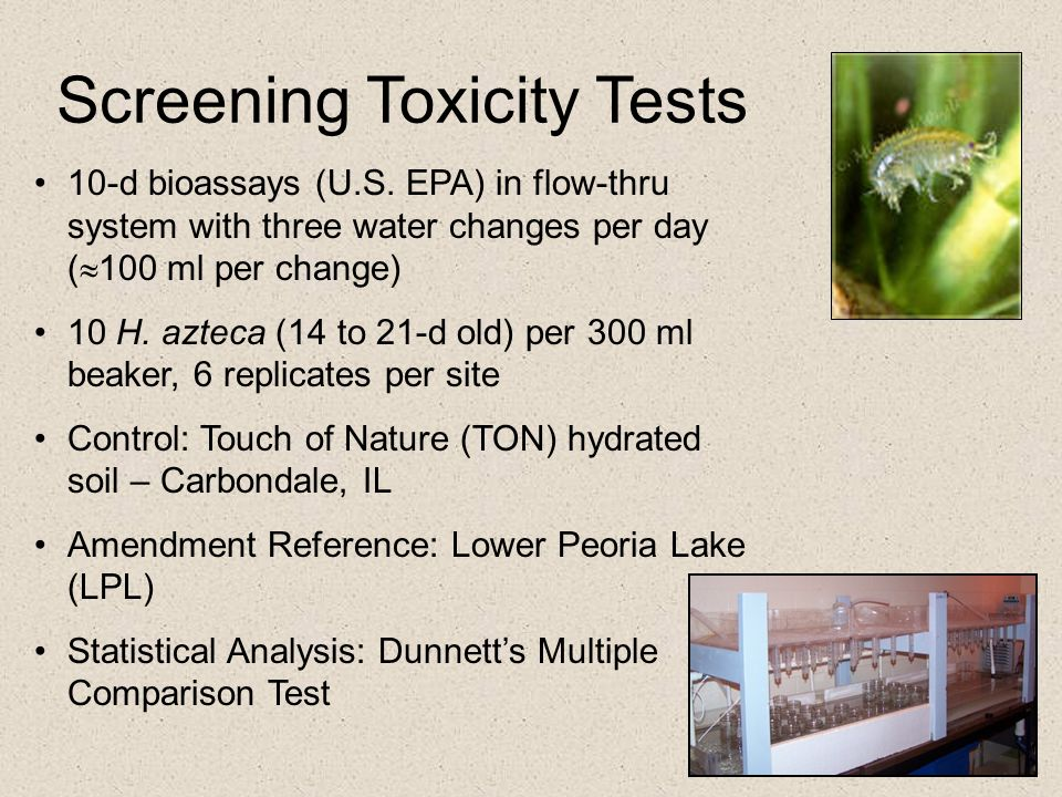 Screening Toxicity Tests