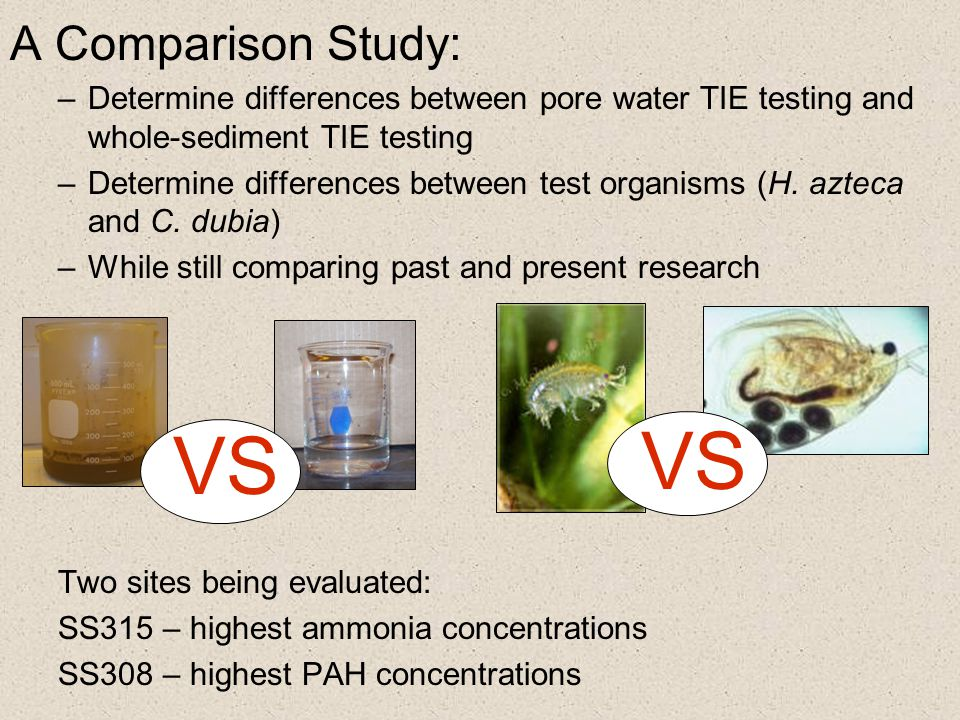 VS VS A Comparison Study: