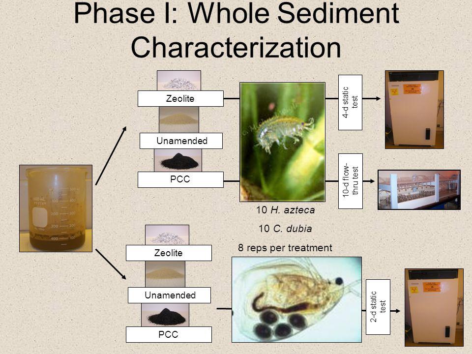 Phase I: Whole Sediment Characterization