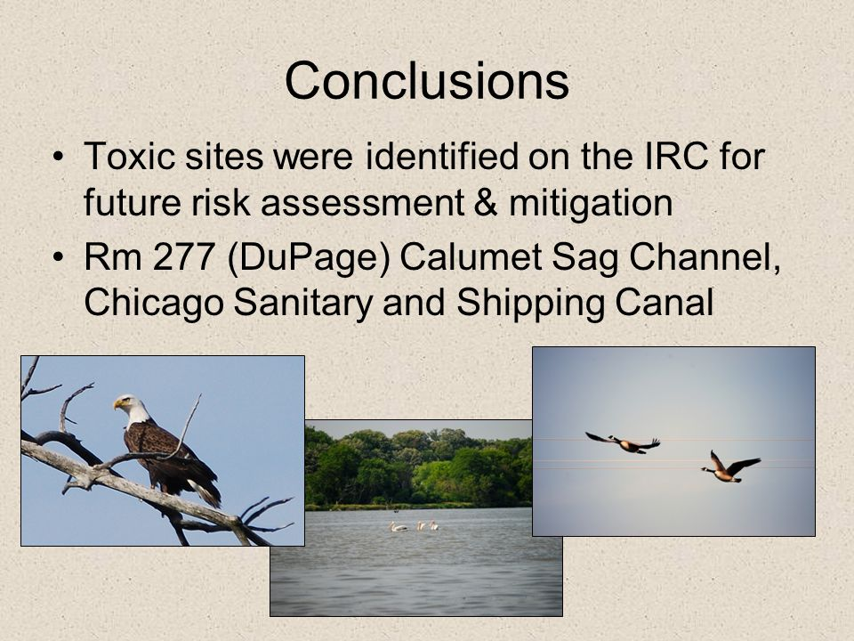 Conclusions Toxic sites were identified on the IRC for future risk assessment & mitigation.