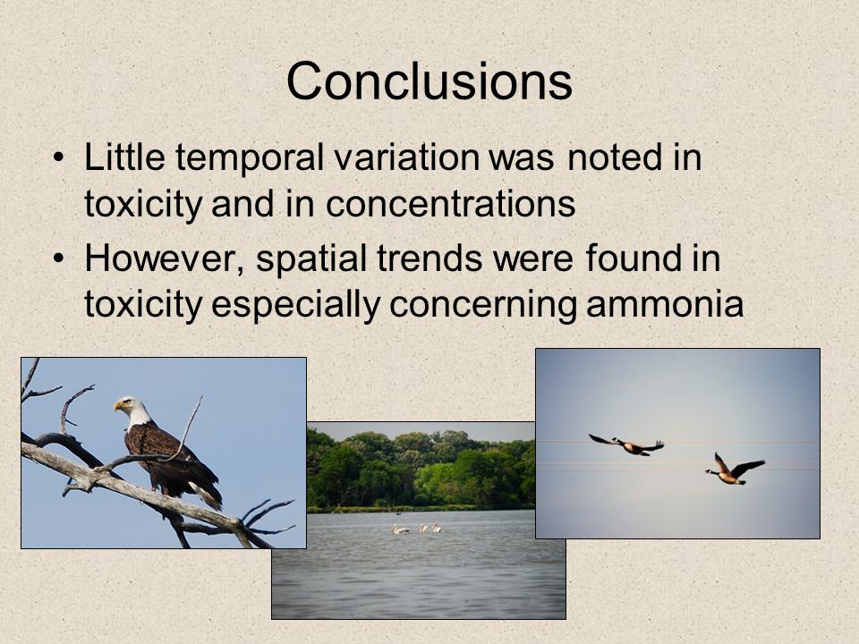 Conclusions Little temporal variation was noted in toxicity and in concentrations.