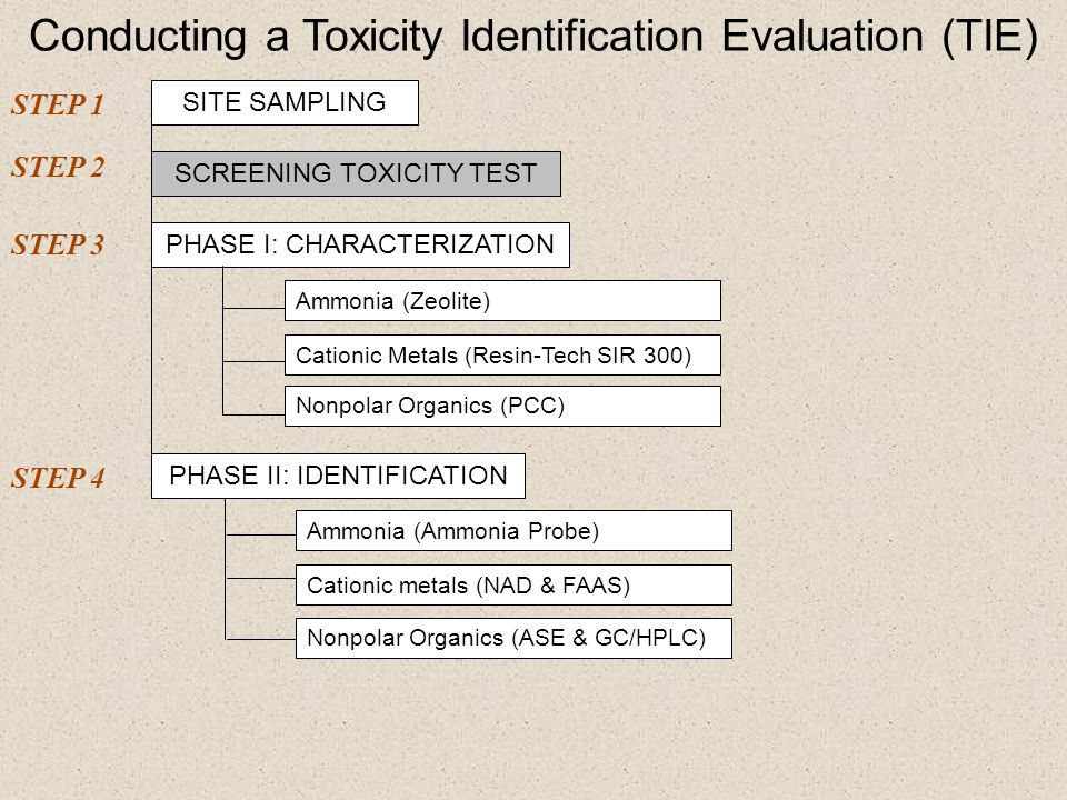 Conducting a Toxicity Identification Evaluation (TIE)