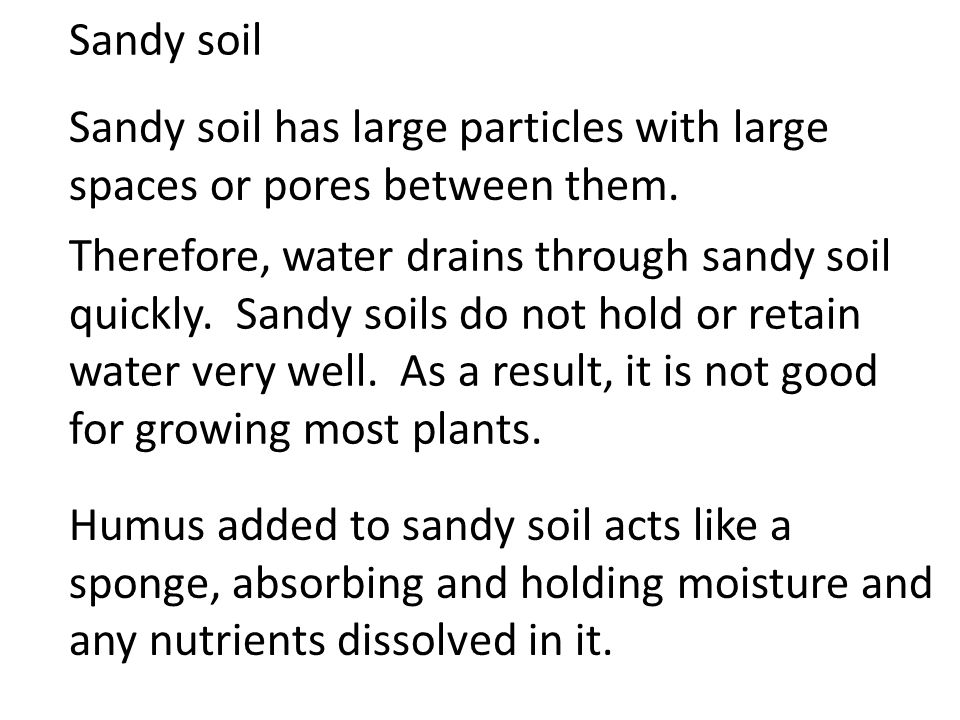 Sandy soil Sandy soil has large particles with large spaces or pores between them.