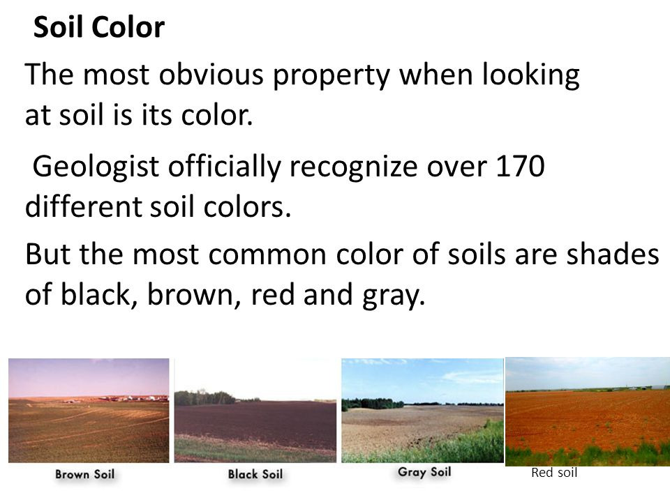 The most obvious property when looking at soil is its color.