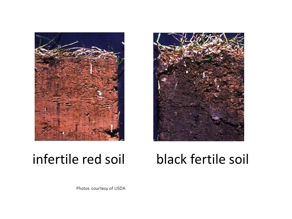 infertile red soil Photos courtesy of USDA black fertile soil