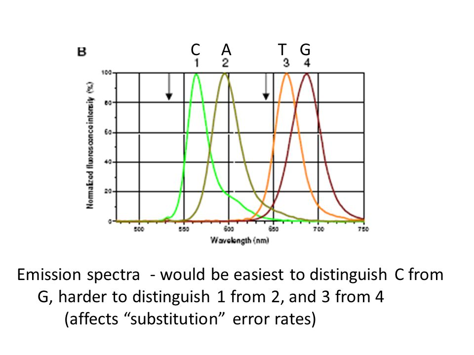 C A T G Emission spectra - would be easiest to distinguish C from. G, harder to distinguish 1 from 2, and 3 from 4.