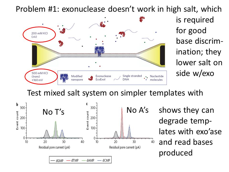 Problem #1: exonuclease doesn't work in high salt, which